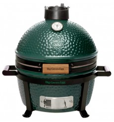 BARBECUE BIG GREEN EGG
